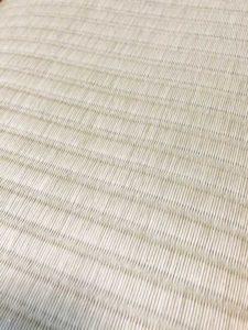 美草表抗菌